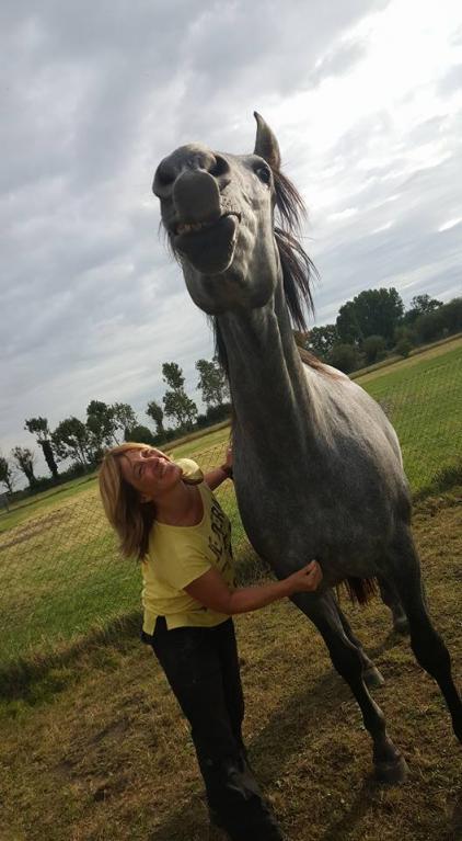 natuurgeneeswijzen-paard