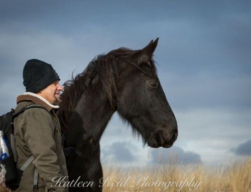 Samen beleven, samen groeien met paarden