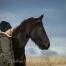 samen-beleven-samen-groeien-paarden