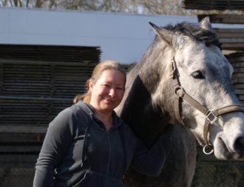De aantrekkingskracht tussen mens en paard.