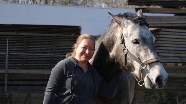 aantrekkingskracht mens paard