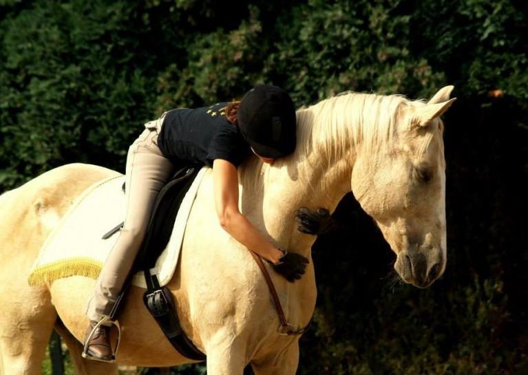 6 tips om je paard trots te maken - Paardentaal Magazine