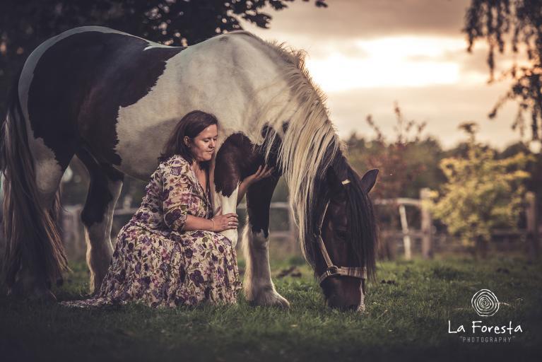 paardentaal-spiegel-coaching