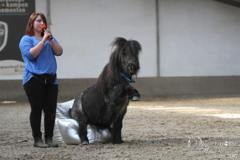Horse Awareness Event vrijheidsdressuur