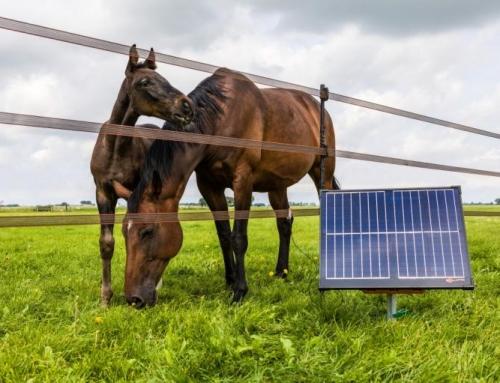 Ontdek de duurzame én betrouwbare oplossing voor uw elektrische afrastering